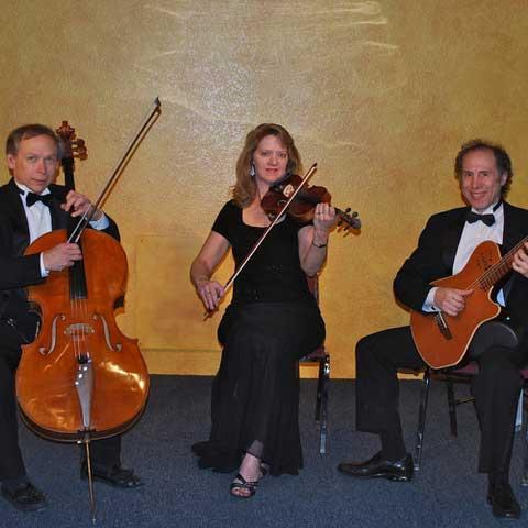 SS String Trio